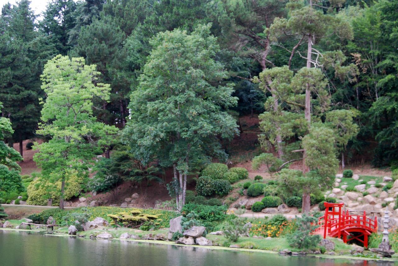 1 Parc oriental de Maulévrier (20)