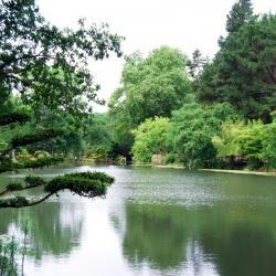 1 Parc oriental de Maulévrier (23)