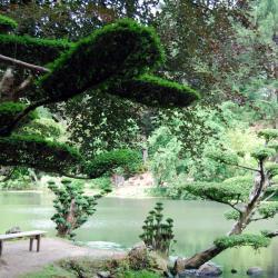 1 Parc oriental de Maulévrier (24)