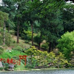 1 Parc oriental de Maulévrier (26)