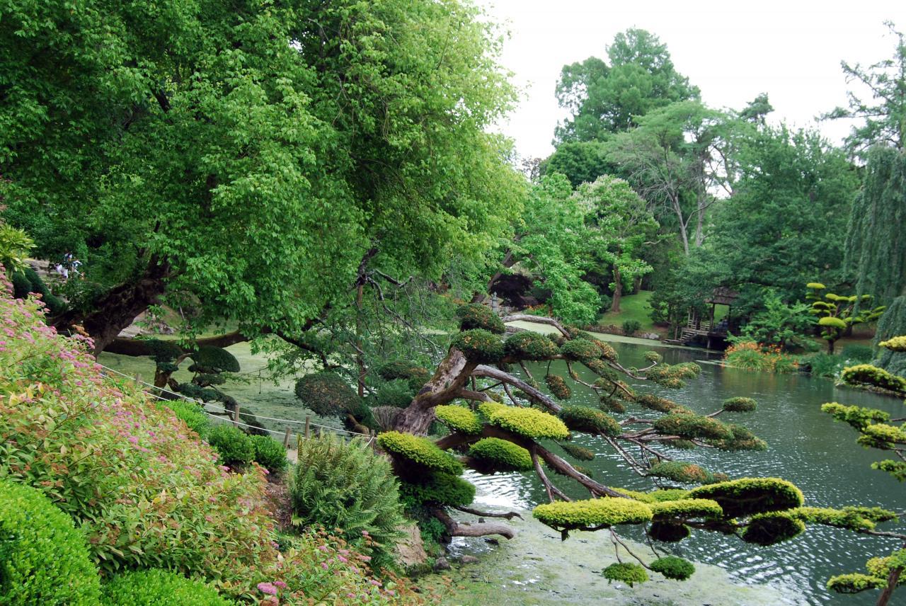 1 Parc oriental de Maulévrier (49)