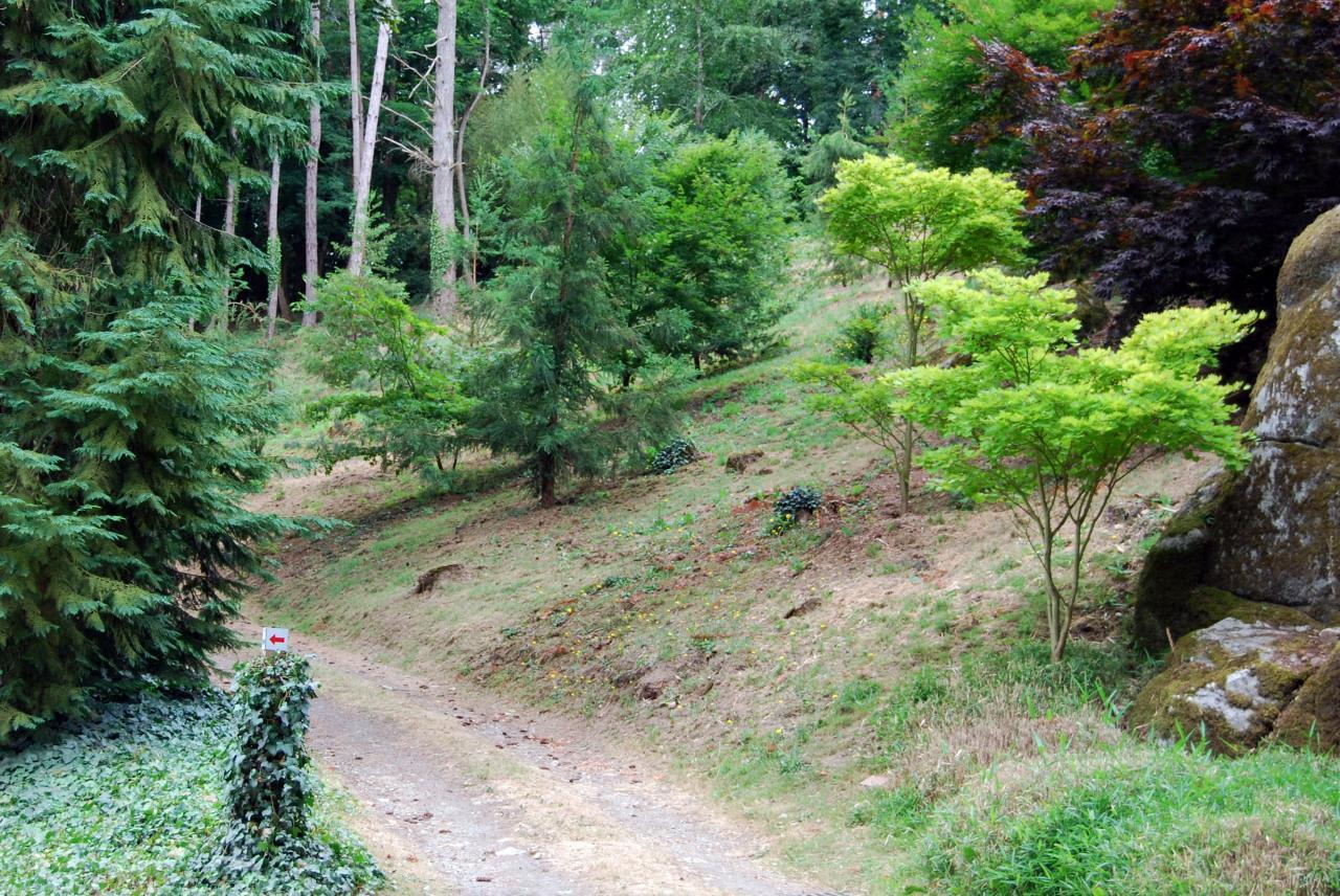 1 Parc oriental de Maulévrier (58)