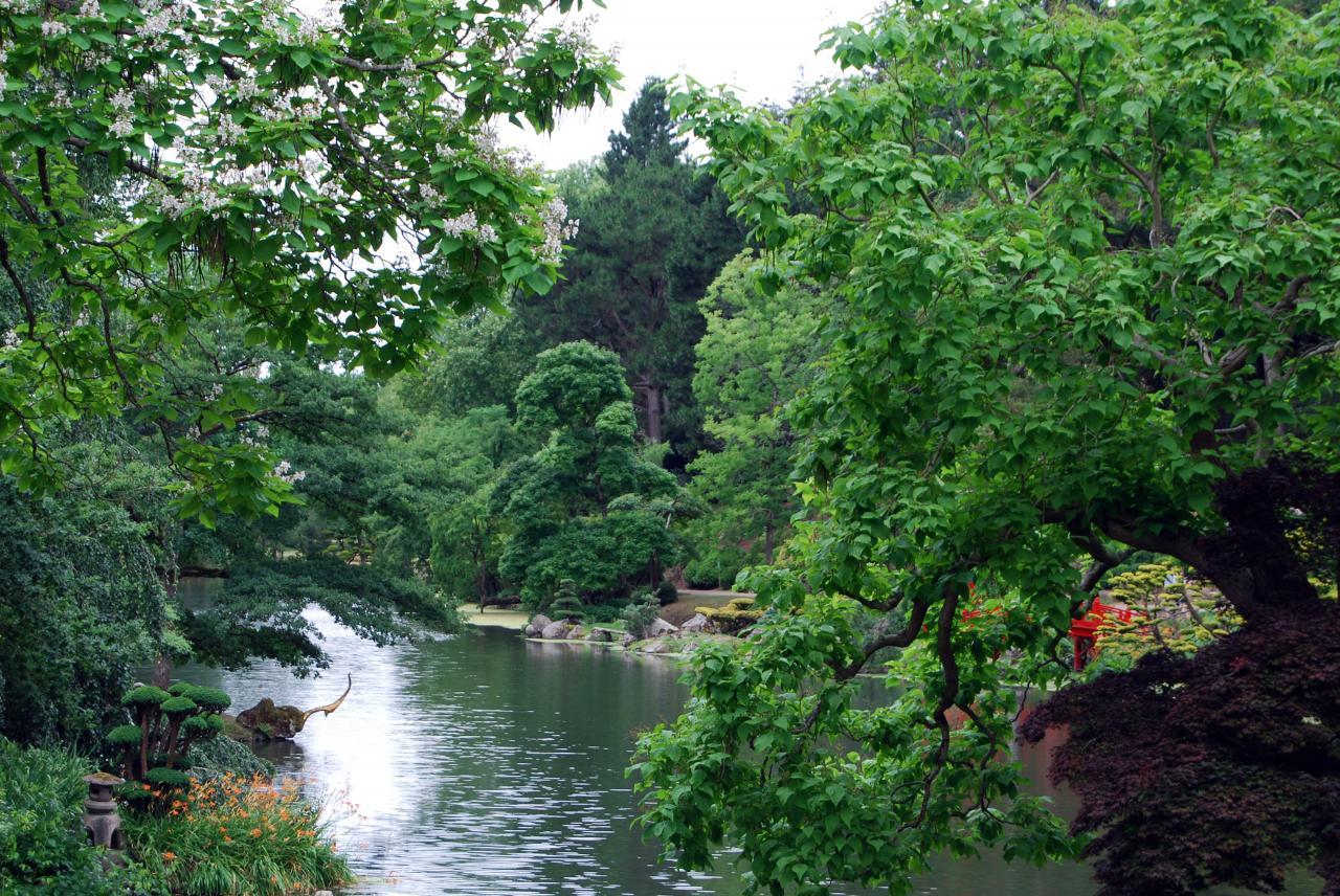 1 Parc oriental de Maulévrier (67)