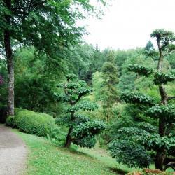1 Parc oriental de Maulévrier (7)