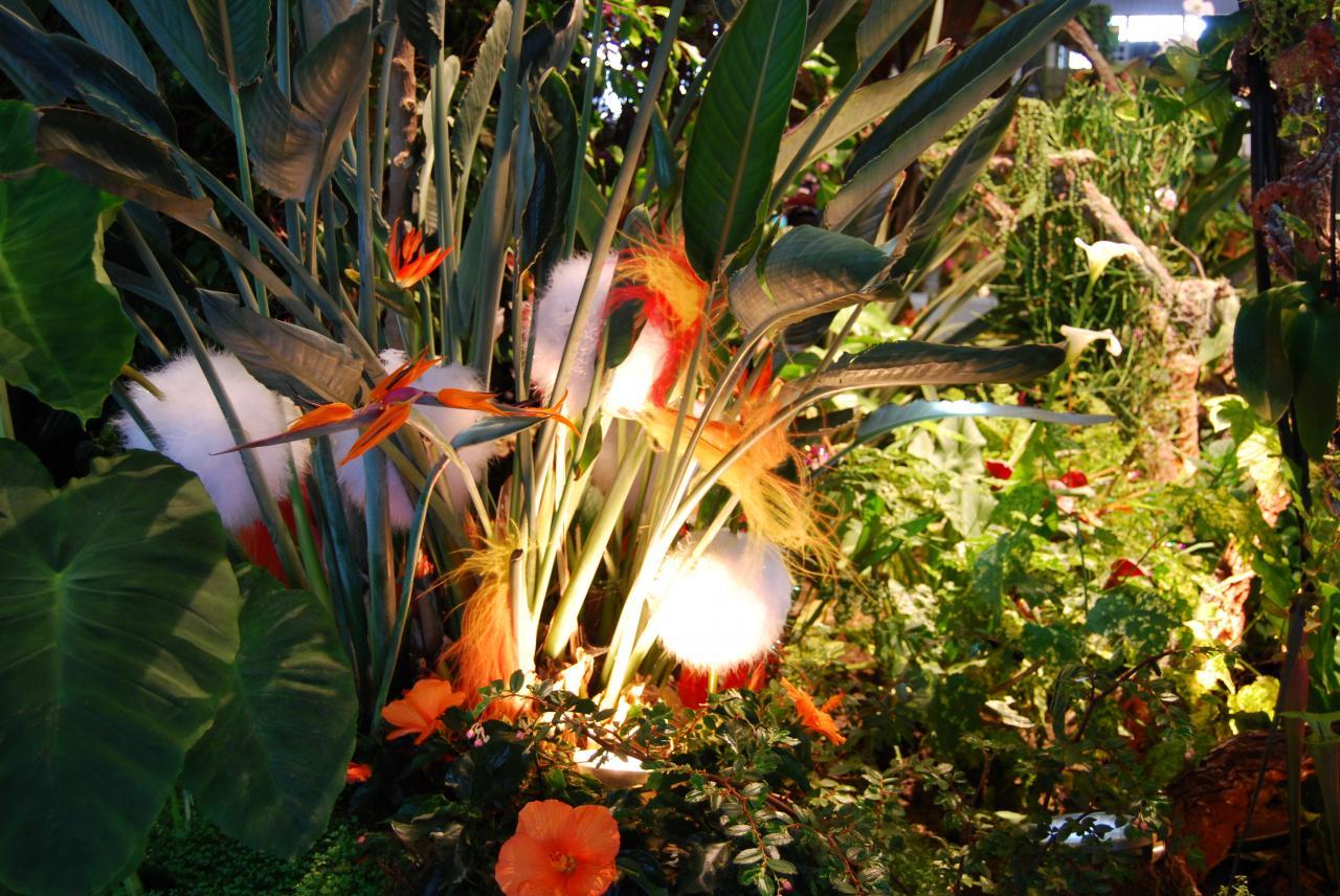 2014 FLORALIES NANTES  (119)