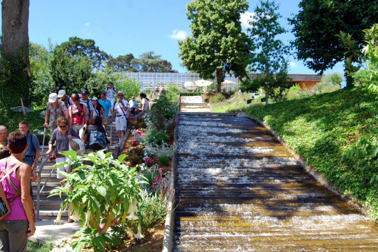 3 Jardin CAMIFOLIA (20)