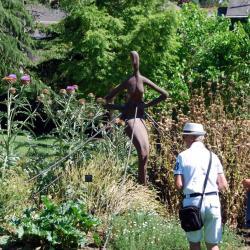 3 Jardin CAMIFOLIA (28)