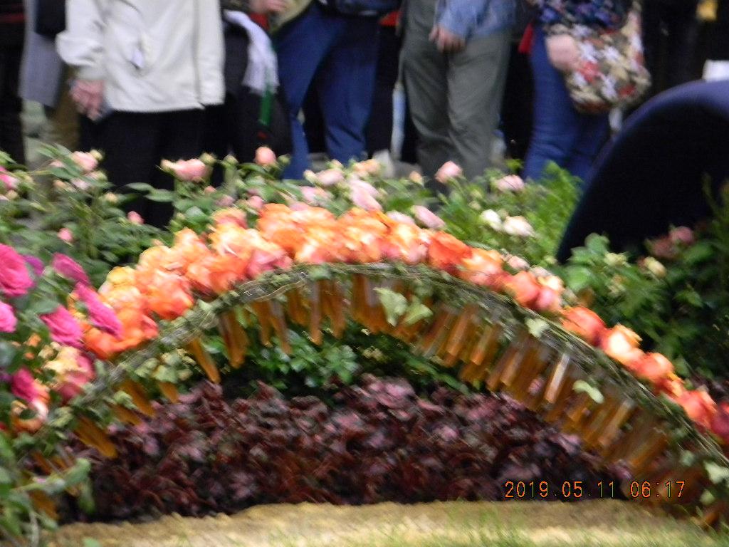 Comment nourrir les roses durant l'exposition