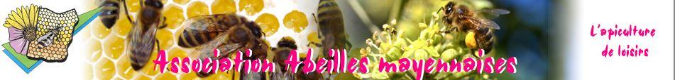 Abeilles mayennaises