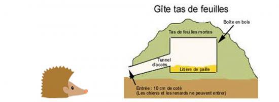 herisson-gite.jpg