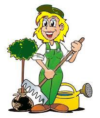 jardiniere1.jpg